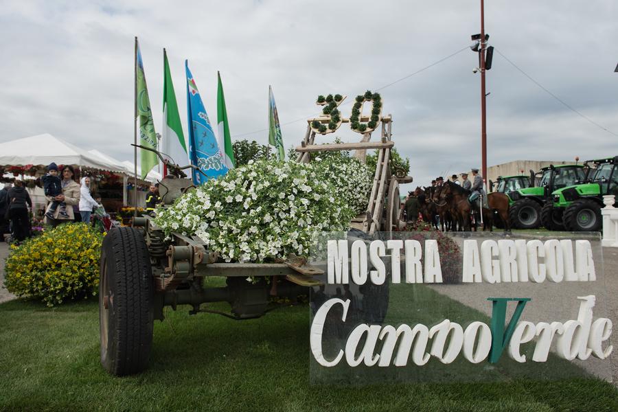 Mostra Agricola Campoverde, domani Kiwi e alimentazione