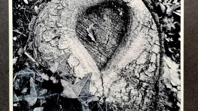 Mostre: A Priverno la prima di Pietro Fabrizio